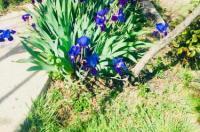 Casa Rural Barranco de la Salud Image