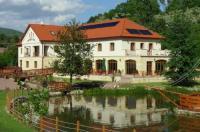 Aranybánya Hotel Image