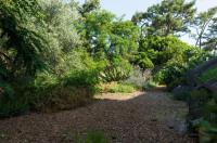 Le Lodge du Cap Ferret Image