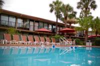 Magic Tree Resort Image