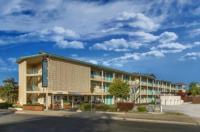 The Stevenson Monterey Image