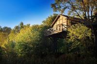 Domy na Drzewach - Dolina Charlotty Image