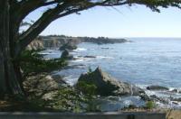 Sea Gate Image