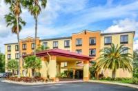 Comfort Suites Tampa - Brandon Image