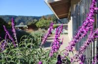 Contenta Inn Image