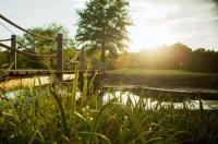 Cedar Creek Image