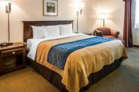 Comfort Inn Las Vegas Image