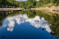 El Lago Image