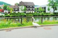 Hotel Schiff Nagold Image