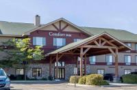 Comfort Inn Owatonna Image