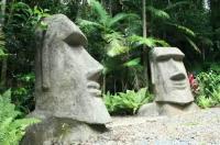 Rainforest Hideaway Image