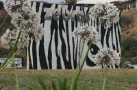 Zebras Guest House Geraldton Image