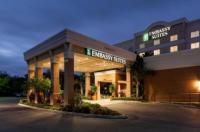 Embassy Suites Tampa - Brandon Image