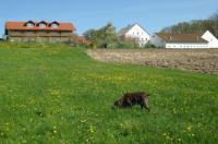 Apartment Am Ferienhof 3 Image