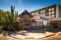 Wyndham Garden Carson City Max Casino Image