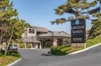 Best Western Plus Lincoln Sands Suites Image