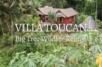 Villa Toucan Image