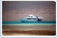 Etoiles Yacht - Sharm El Sheikh Every Sunday Image
