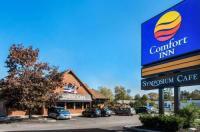 Comfort Inn Brantford Image