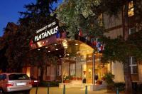 Hotel Platanus Image