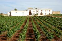 Agriturismo Baglio Donnafranca Wine Resort Image