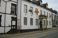 Owain Glyndwr Hotel Image