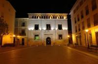 Hotel Avenida Plaza Image